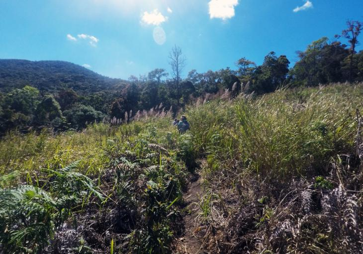 trekking and hiking from Da Lat to Tuyen Lam and Chicken Village